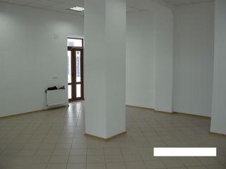 Собственник продает помещение под бизнес в самом центре В.Александри-угол В.Микле