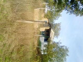 Dacie in Satu Horodiste Raionu Rezina in apropiere de Manastirea Tipova izvoru la 50 de metre de cas