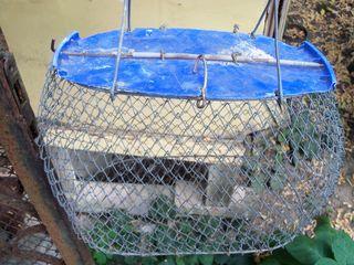 Садок  (б/у)  для   рыбы  с  ручками  и  с  веревкой  =  50 лей.
