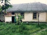 Жилой дом в Вадул луй Водэ