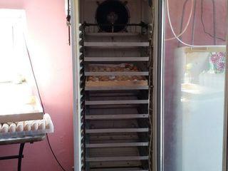 Vindem incubator de 1000 oua de gaina automat!
