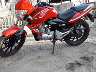 Motomax Gs 250