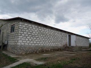 4 дачных участков с домами и с современной фермой