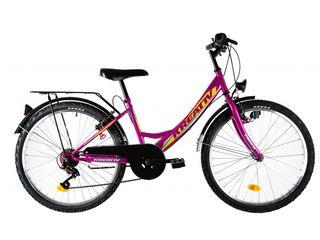 Biciclete pentru dame de calitate europeana cu portbagaj in spate posibil in rate la 0%
