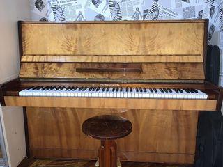 Супер пианино по супер цене!