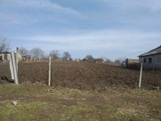 Se vinde un teren pentru construcție în satul Holercani raionul Dubăsari.