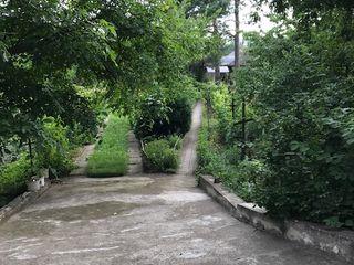 Casa de vinzare - Truseni - 26 ari