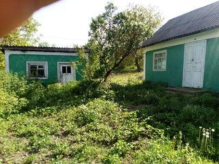 Продается дом с огородом г. Окница, не дорого, Торг уестен!!!