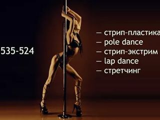 Adult combo dance class. school of pole dance & strip-plastic