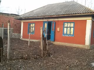 Продаётся дом с участком  в селе Новые Фундуры . Цена договорная