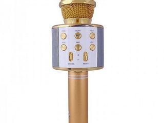 Караоке-микрофонWster WS-858