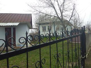 Se vind casa in raionul Drochia beci fintina 50  ari pamint iarba copaci iaz