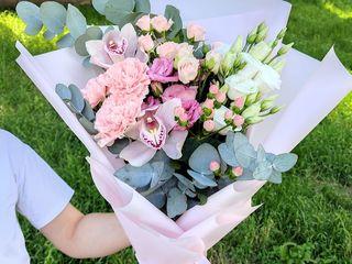 Цветы / Flori