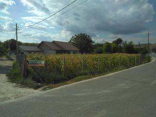 Vindem teren pentru casa in Ciorescu,s.Fauresti,centru,suprafata 12 ari,retele in preajma !