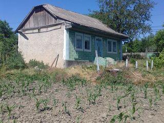 Casa Gura-Galbenei