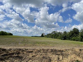 2 hectare Prima linie Dacia / Novabacioskaya