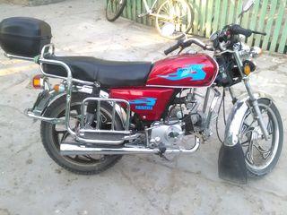 Alpha Moto clasic