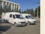 Hamal+Transport