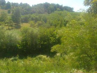 Se vinde teren de constructie pentru vila, fabrica etc...in satul Mereni.