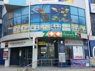 Магазин Zooterra - лучший в городе выбор аквариумов, техники, кормов и декоративных рыбок...