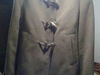 Paltonaș scurt și scurte diferite