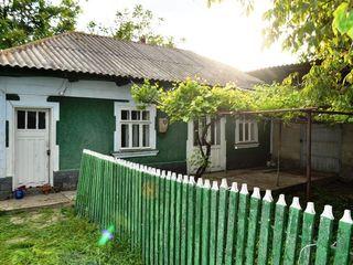 Locuinta Elizaveta, Casa. Дом в Елизаветовке