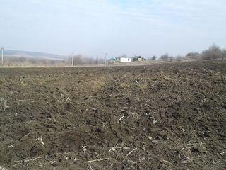2,9 ha la traseul Chisinau-Ungheni cu constructie 30000 euro in rate pe un termen de 5 ani 30000 eur