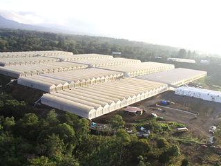 Современные и надежные промышленные испанские теплицы от компании ULMA AGRICOLA