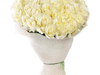 Доставка цветов, цветы с доставкой в кишиневе и молдове от cadourionline