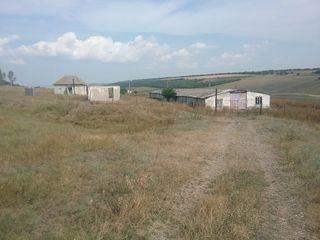 Se vinde ferma în Sarateni Leova