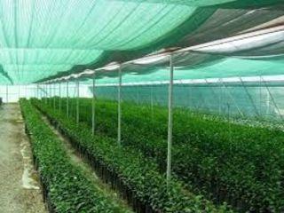 Затеняющая сетка 45% (4х50) рулон 950 lei