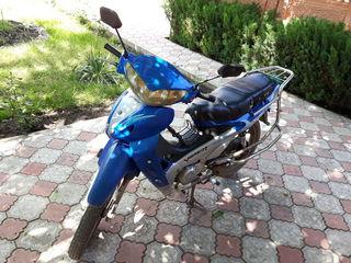 Viper Active ZS50