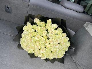 101 trandafiri albi doar 750  lei