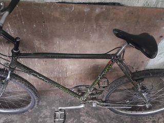 Vind bicicleta  urgent!!