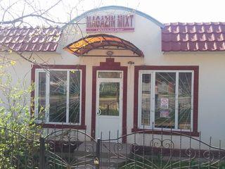 Se vinde magazin in centrul satului Pelinia