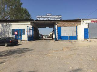 Аренда вулканизации и шиномонтажа 80 кв.м. в Бельцах по обьездной Arenda vulcanizare si service roti