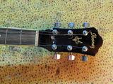 Ремонт гитар любой сложности.