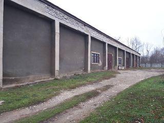 Продается база в городе Штефан-Водэ