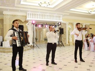 Muzica pentru nunti cumetrii ! formatia virtual - alegerea perfecta