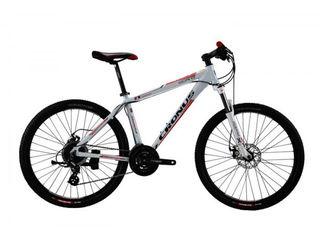 Biciclete pentru toata familia, велосипеды