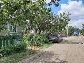 Se vinde casa de locuit in orașu Dondușeni pe str.Trandafirilor 5....