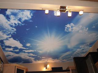 Фото-обои, натяжные потолки, печать с 3d-эффектами