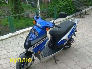 Viper 49