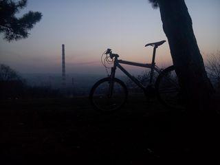 Frera mountain bike