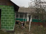 10 km de Chisinau, 26 ari, urgent