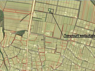 Se vînd două terenuri pentru construcții în s. Molești