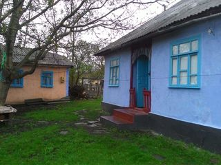 Se vinde casă, sarai, beci şi alte acareturi în satul Şeptelici