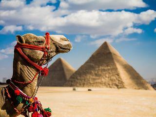 Egipt 7 zile cu totul inclus la doar 200 euro