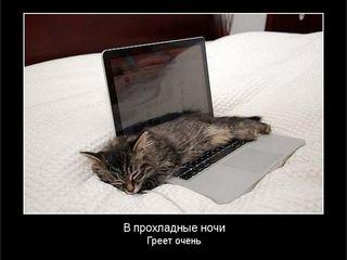 Ремонт ноутбуков.срочно!!восстанавление информации.удаление вирусов