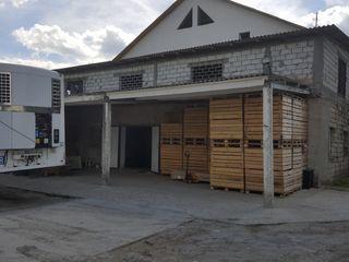 Arenda frigider 450 toane (Сдаём холодильные камеры в аренду)!! 20 км от Кишинева!!